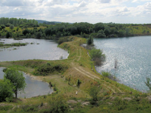 The_New_Bund_at_College_Lake_-_geograph.org.uk_-_1397605